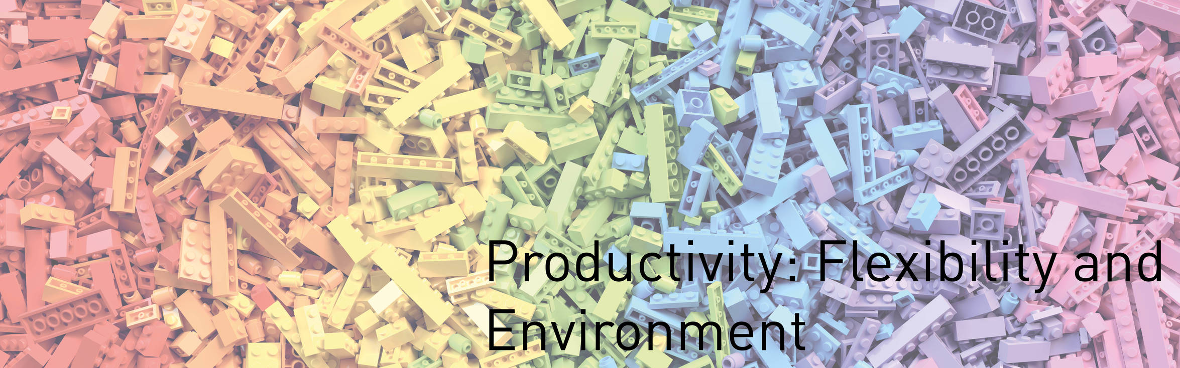 Productivity: Flexibility and Environment